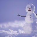 World Day of the Snowman