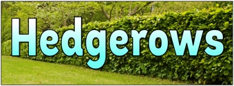 Hedgerows Banner