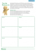 Better World Detectives - Turtles Worksheet
