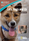 Cats, Dogs and Us (11-14)