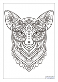 Mindfulness Colouring - Fox