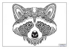 Mindfulness Colouring - Raccoon