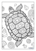 Mindfulness Colouring - Turtle