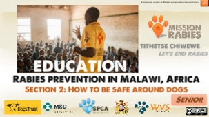 Rabies Prevention - Presentation