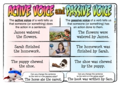Passive and Active Voice Poster