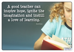 A good teacher...