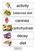 Teeth and Healthy Eating Vocabulary