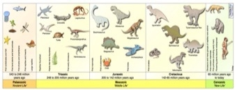 The Dinosaurs In History | Teaching Ideas