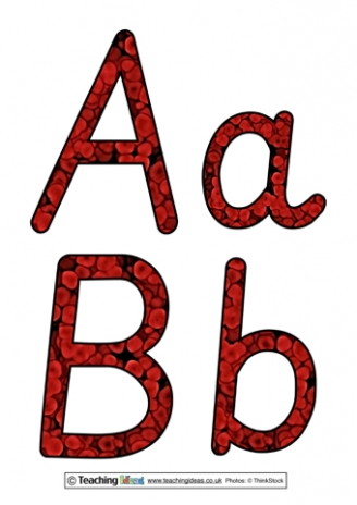 Blood Cell Display Letters