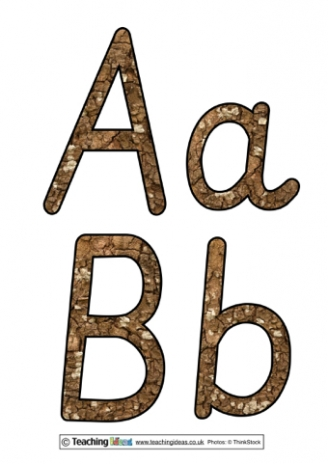 Tree Bark Display Letters