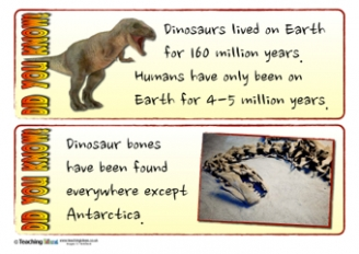 Dinosaur Did You Know? Cards