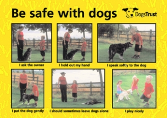 Be Safe with Dogs