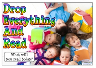 Drop Everything And Read Posters