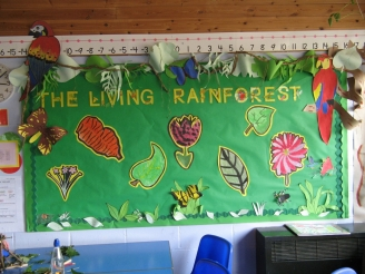 The Living Rainforest Display