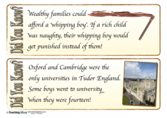 Tudors Did You Know? Cards