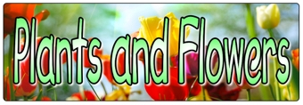Plants and Flowers Banner