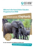 Animals and Us - Elephants