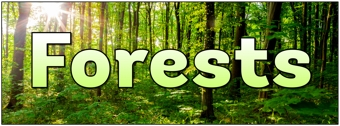 Forests Banner