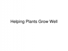 Helping Plants to Grow Well