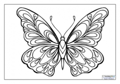 Mindfulness Colouring - Butterfly