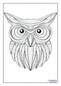 Mindfulness Colouring - Owl