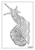 Mindfulness Colouring - Snail