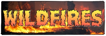 Wildfires Banner