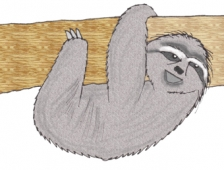 Sloth Display Picture