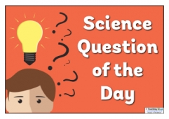 Science 'Question of the Day' Poster 3