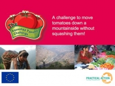 Squashed Tomato Challenge - Powerpoint