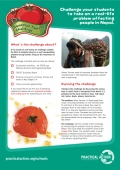Squashed Tomato Challenge - Teachers' Notes