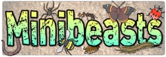 Minibeasts Banners