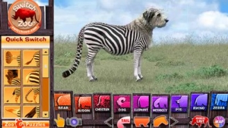 Create Your Own Animal