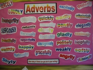 Adverbs Display