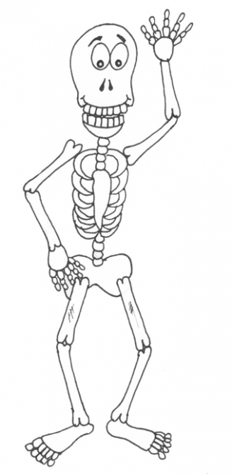 Skeleton Display Picture