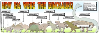 How Big Were the Dinosaurs? Banner