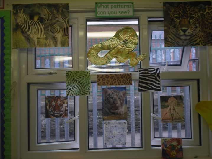 Animal Patterns Display