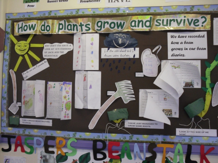 How do Plants Grow and Survive? Display
