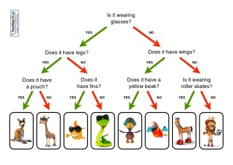 Image result for classifying animals ks2